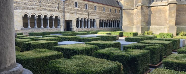 Kloostergang Teseum